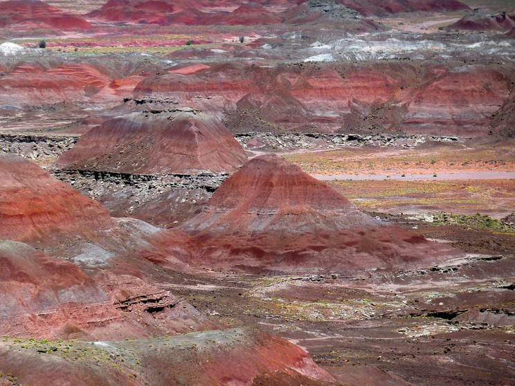petrified-forest-55503_960_720