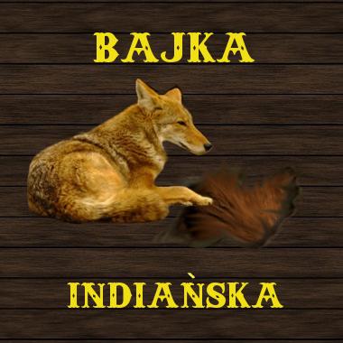bajka kojot2